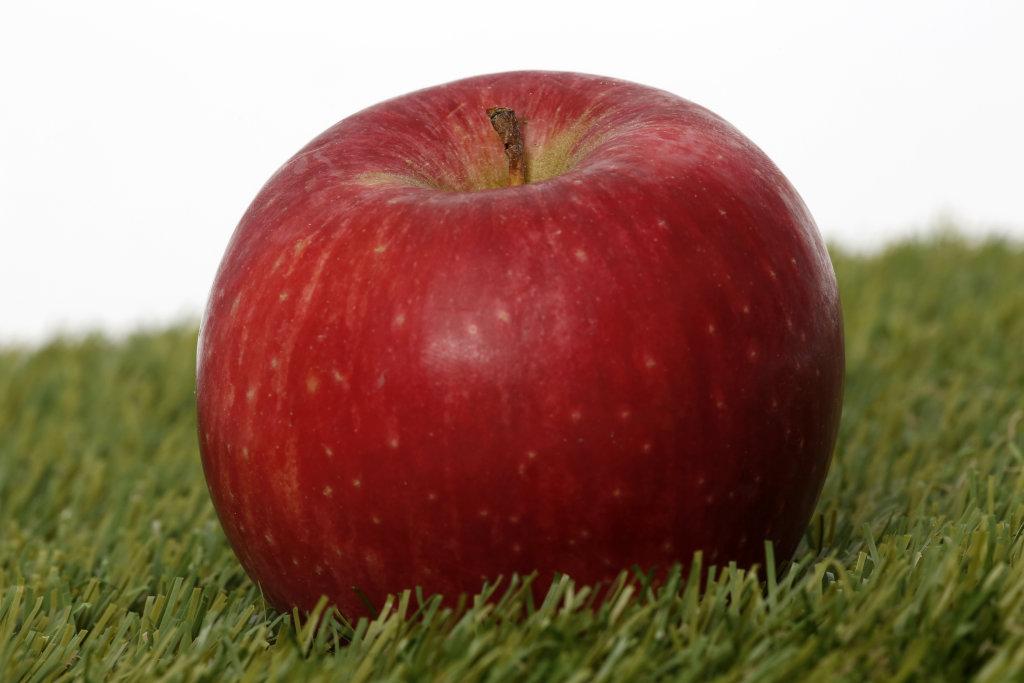 Apfel auf einer Wiese