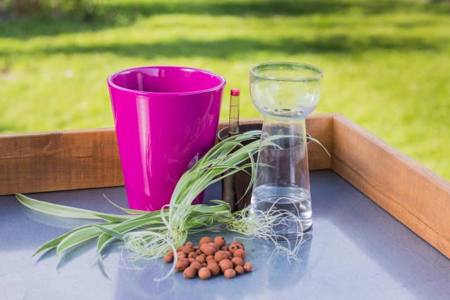 Pflanztisch mit Hydrokultur