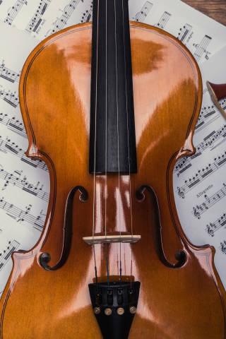 Geige und Noten