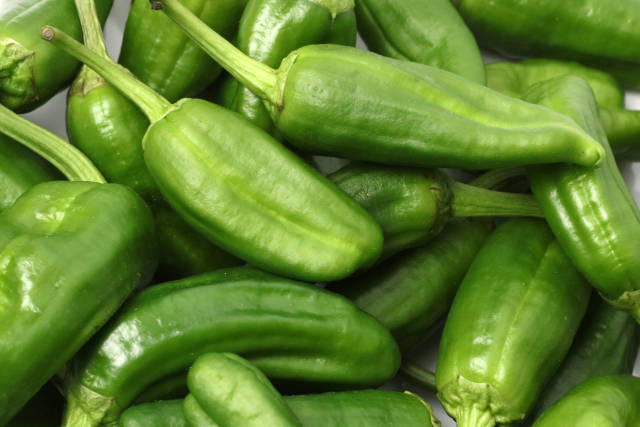 Pimientos Padron Peppers