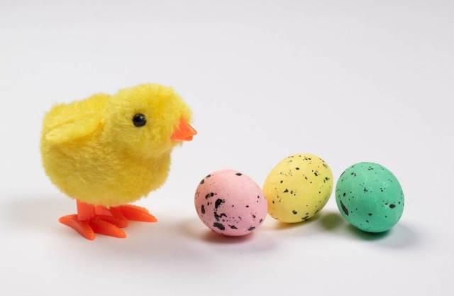 Süßes Osterküken neben gelbem, grünem und rosarotem Osterei vor weißem Hintergrund