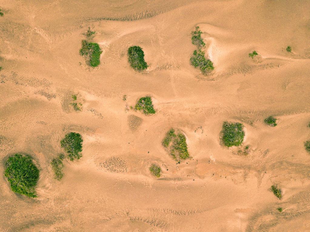 Bird eye view of desert