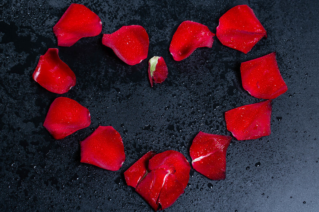 Heart with red rose petals