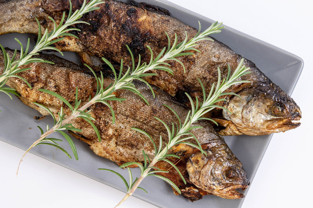 Baked Trout fish on the plate with Rosemary