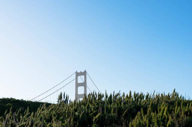 Spitze der Golden Gate Bridge hinter einem Hügel