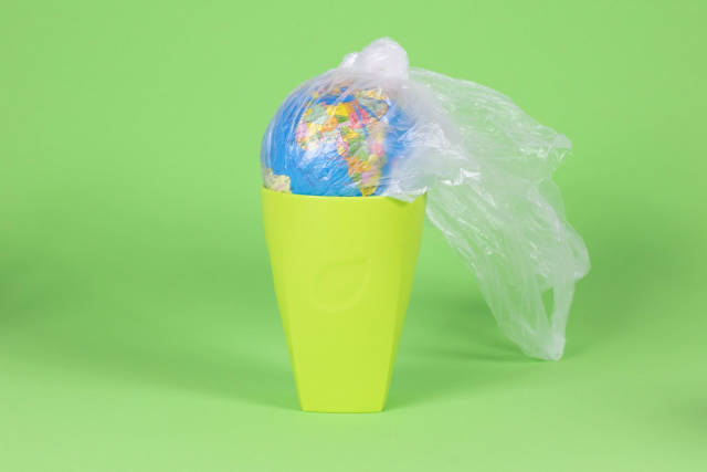 Save environment, say no to plastic bags