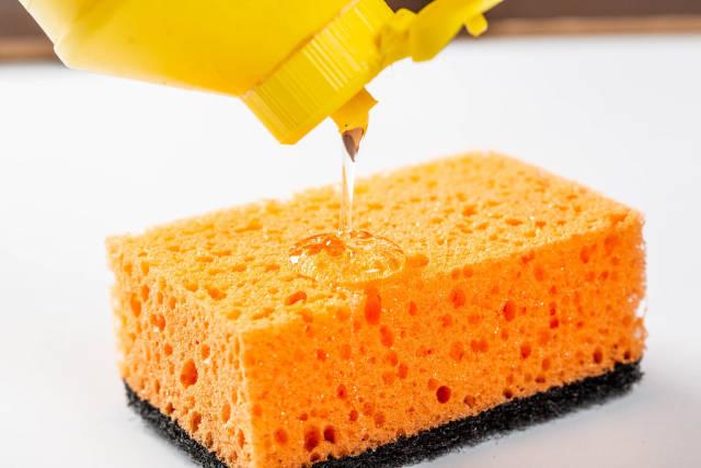 Dishwashing detergent and a sponge