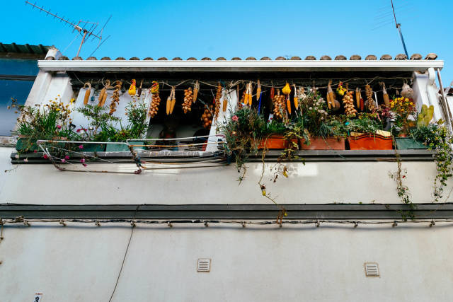 Dried vegetables on the Portugese balcony with flowers
