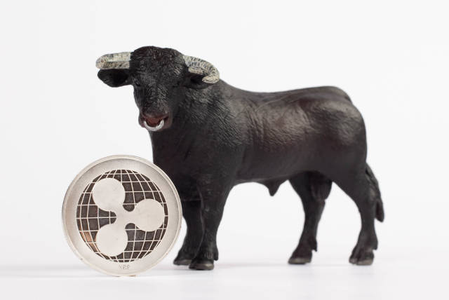 Bull with Ripple coin on white background