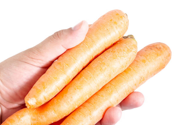 Fresh Raw Carrots in the hand above white background