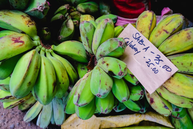 Green bananas on sale in a local farm market