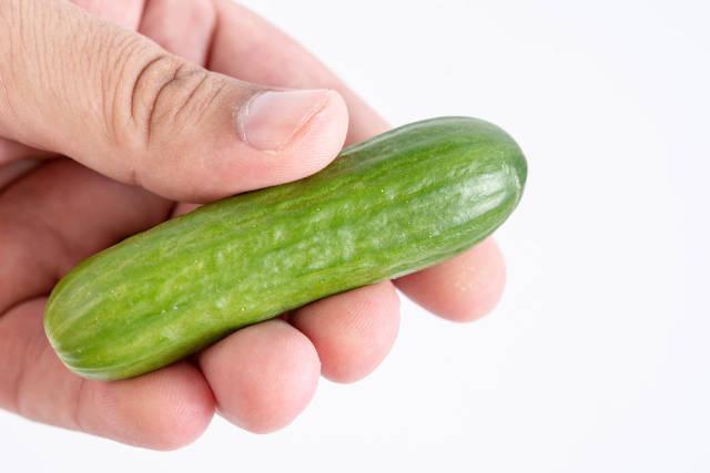 Mini Cucumber in the hand