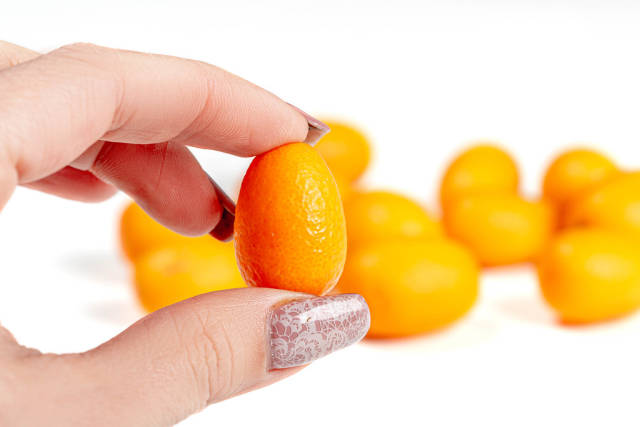 Close-up of kumquat fruit in a womans hand