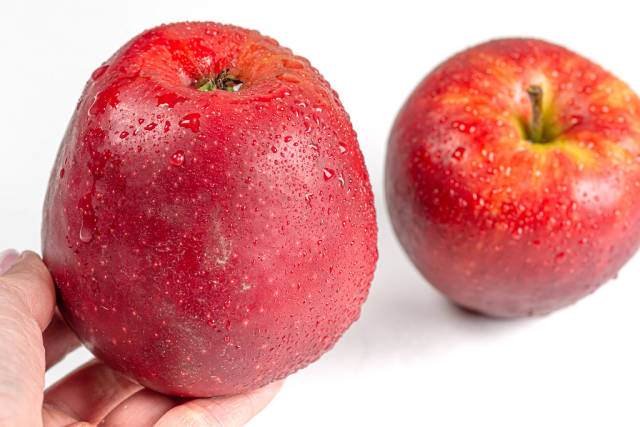 Fresh red apple with drops of water in hand