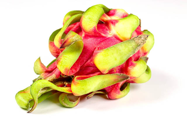 Dragon fruit or Pitaya on white background
