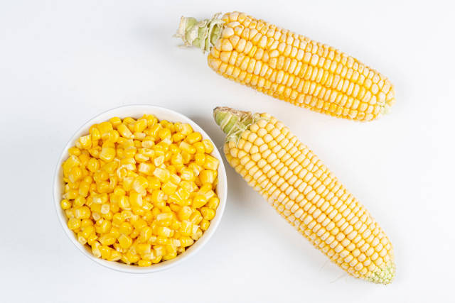 Fresh heads of corn and a bowl of boiled corn kernels, top view