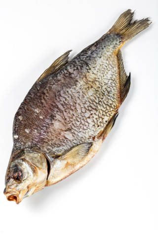 Dried salted freshwater bream on white background