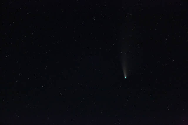 Comet Neowise in dark night sky with stars