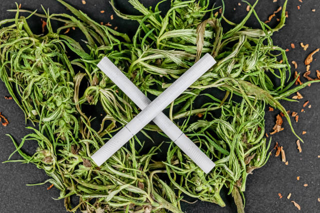 Danger concept, cross made of cigarettes on a heap of cannabis, top view