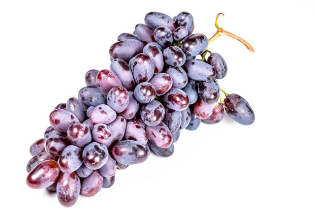 A bunch of ripe blue grapes