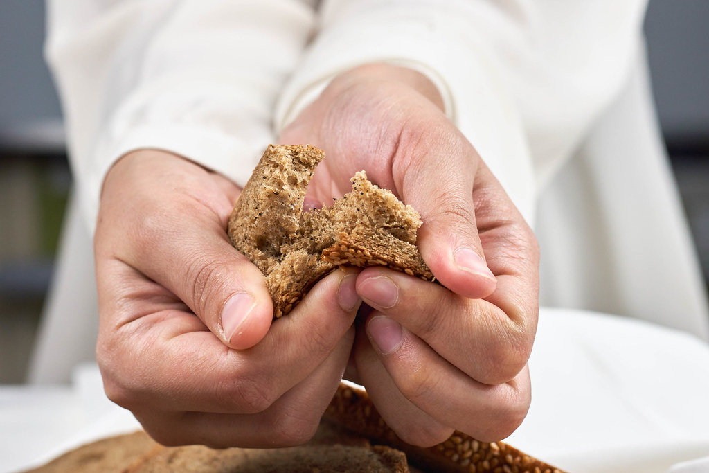 Female hands breaking freshly baked bread