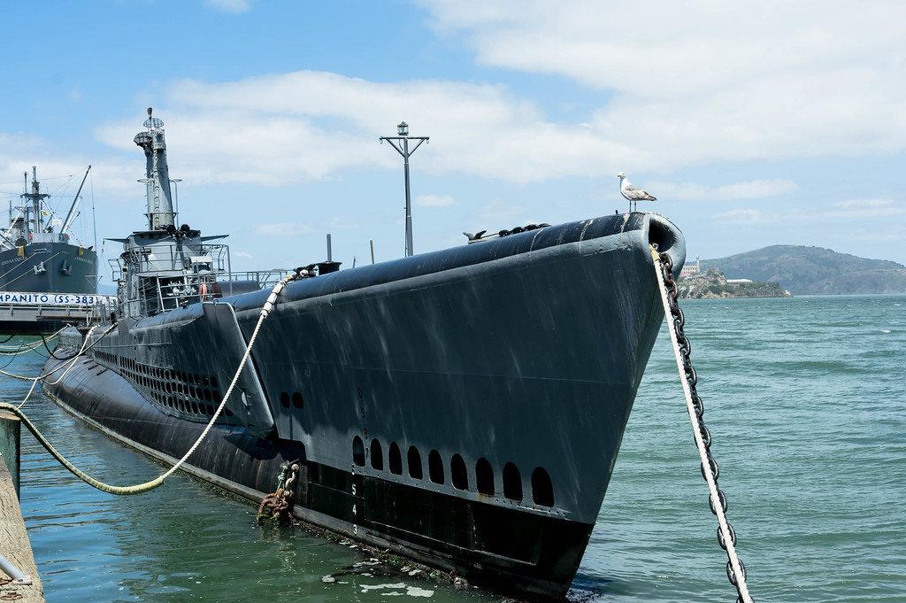 Möwe steht auf dem berühmten U-Boot USS Pampanito