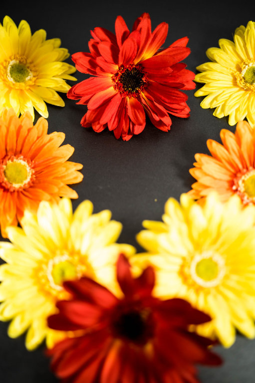 Red, orange, and yellow flowers forming a heart