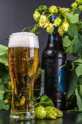 Light beer on black background with fresh hops and bottle