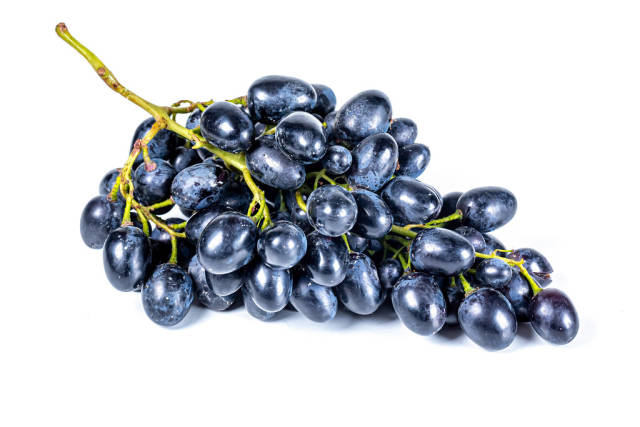 Branch of blue ripe grapes on a white background