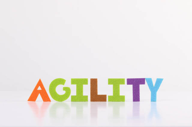 The word Agility on white background