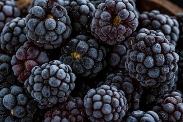 Frozen blackberries background with ripe berries