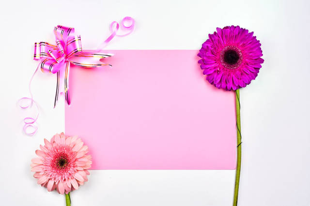 Bright spring background with flowers