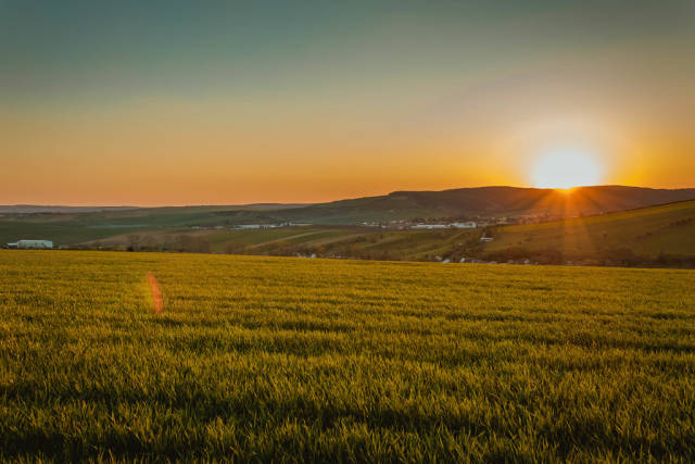 Field at beautiful sunset in South Moravia