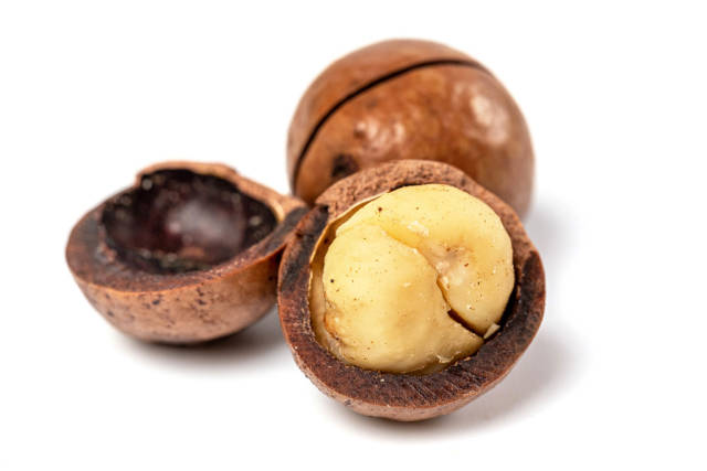 Whole and broken macadamia nut on white