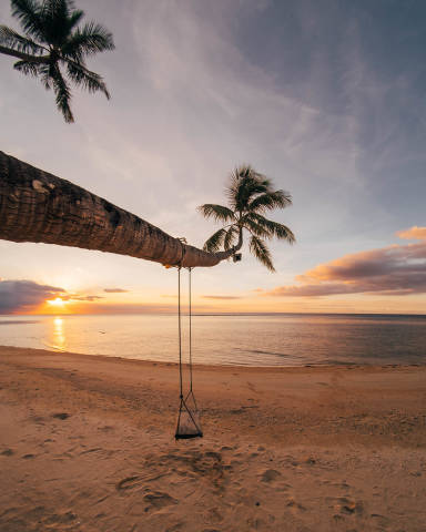 A swing hanging on a coconut tree at Punta Bulata