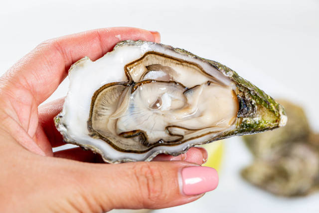 Open oyster in a womans hand, against a background of open oysters, close-up