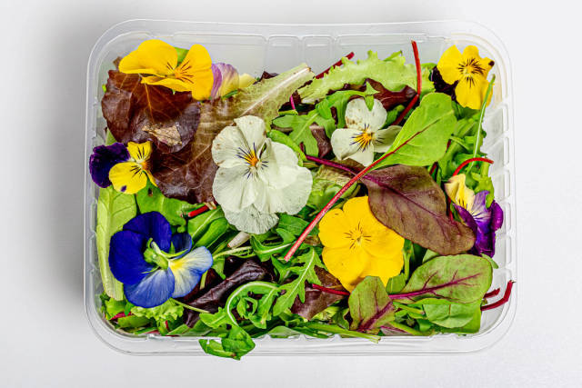 A mixture of different lettuce leaves and edible flowers