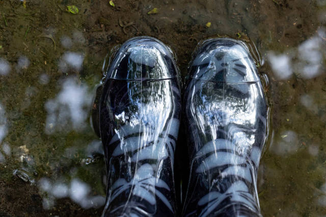 Rubber boots in a puddle, top view