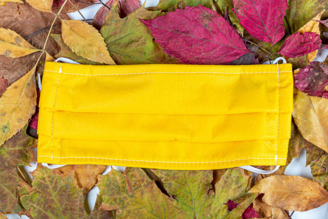 Yellow medical mask on multicolored autumn leaves