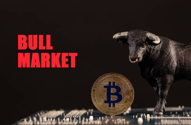 Bull with Bitcoin cryptocurrency on computer motherboard with Bull Market text