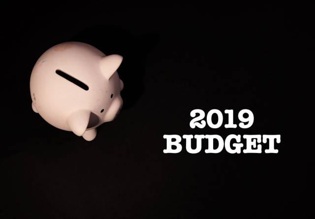 Piggy bank with 2019 budget text