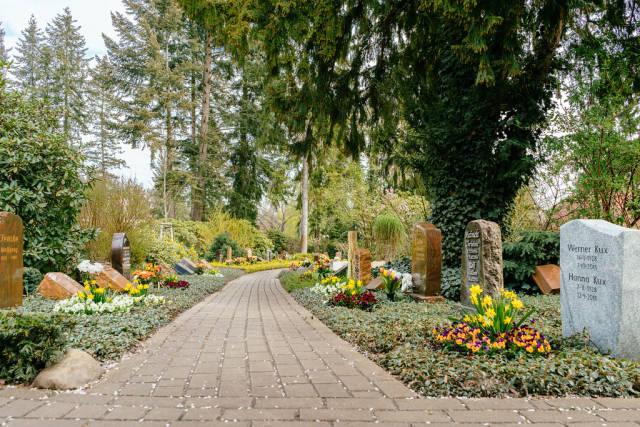 Path through German cemetery in Potsdam