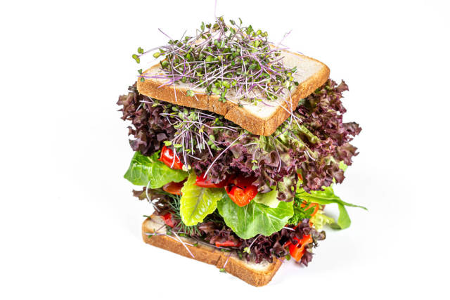Sandwich with vegetables, lettuce and microgreens on a white background. Vegetarian food