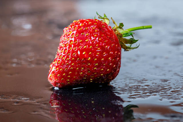 One ripe red strawberry with water drops on a dark background