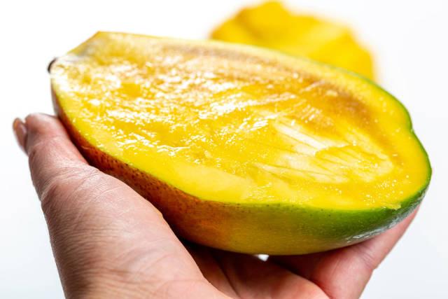 Half ripe mango in female hand close-up