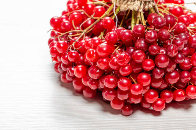 Close - up of ripe viburnum berries on a white wooden background