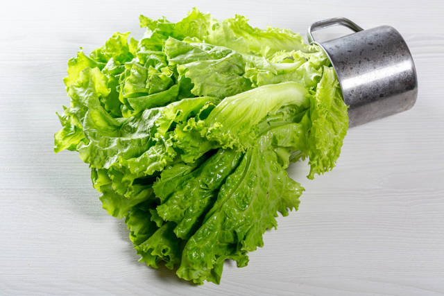 Green lettuce in iron mug on white wooden background