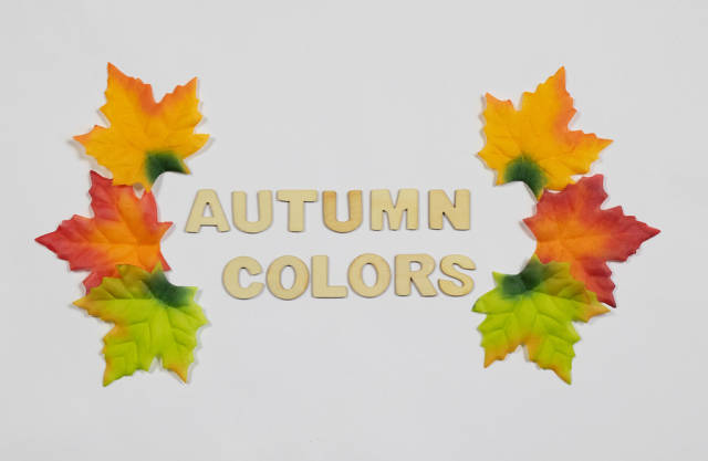 Fall leaves with text autumn colors
