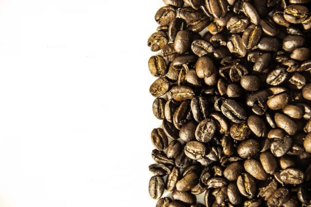 Coffee Grains Division Line