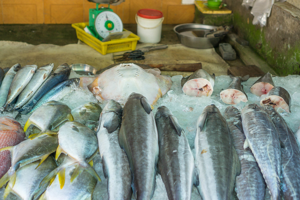 Stingray and other Fish offered at a Wet Market in Vietnam